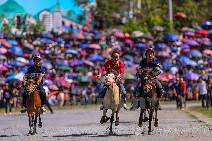 bac ha horse race attracts tourists