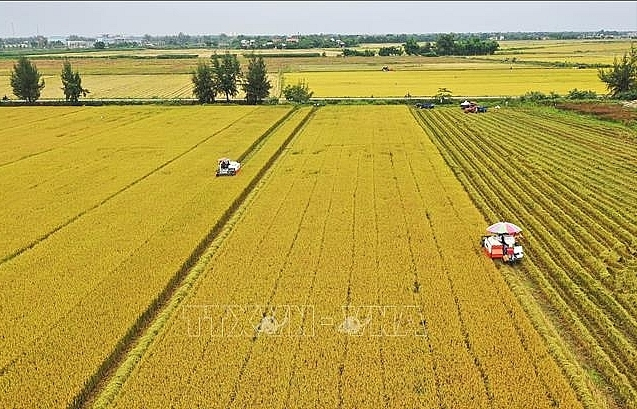 Tax exemptions encouraging agricultural growth