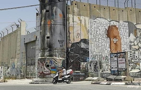 German FM voices 'serious concerns' over Israeli annexation plan