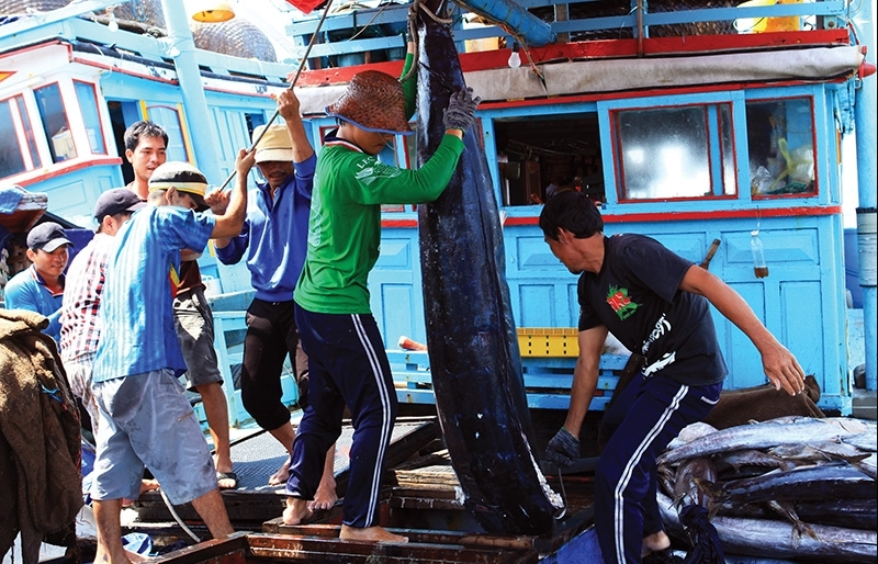 Pushing out the boundaries of sustainable maritime economy