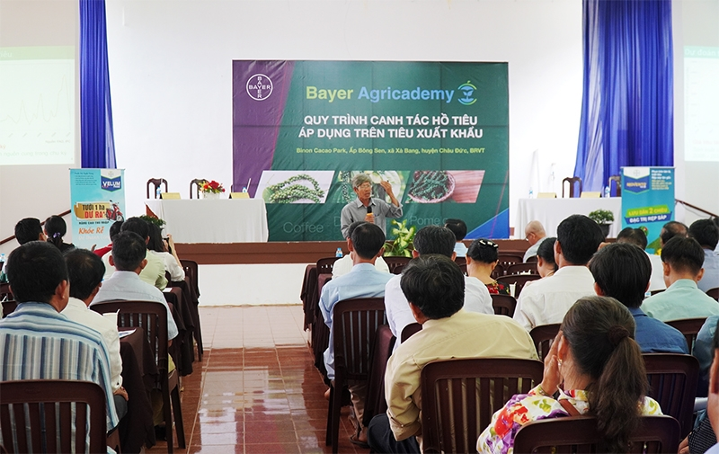 bayers black pepper solutions continue to drive sustainable farming in vietnam