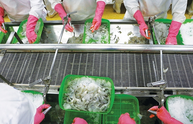 Seafood exports to glide in shallow waters
