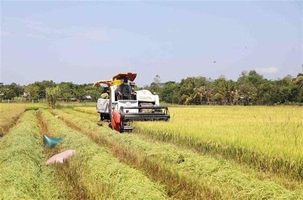 Australian businesses interested in agritech in Vietnam