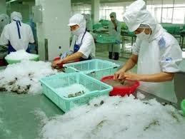 Shrimp decision fuels trade questions