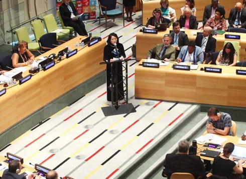 vietnam calls for int'l assistance for climate change adaptation hinh 0