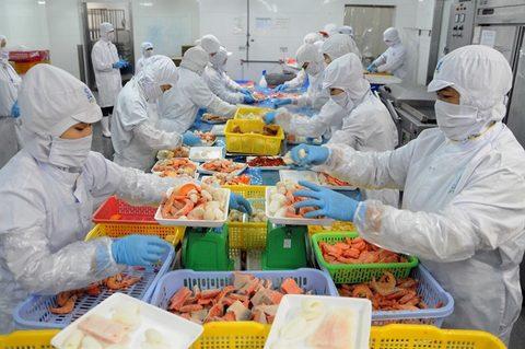 Shrimp exports earn $1.56 billion in H1