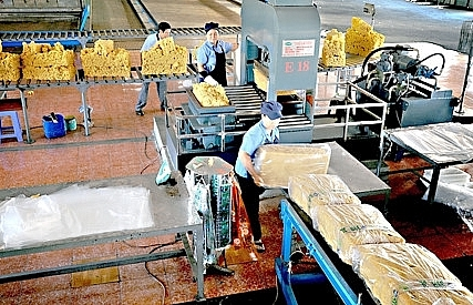 Gia Lai businesses granted 23 overseas investment licences
