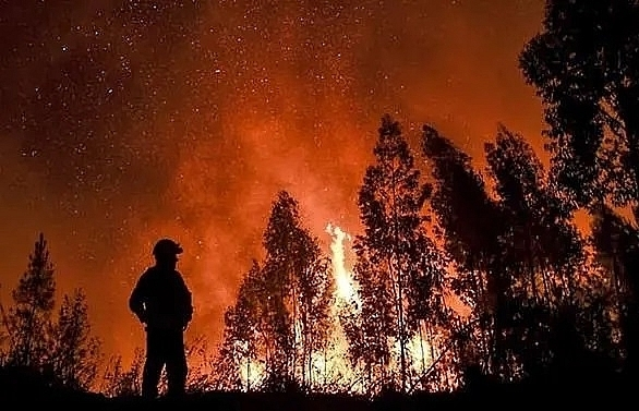 1700 firefighters battle portugal wildfires
