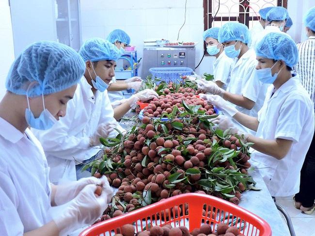 Food producers toil to meet stringent EU regulations