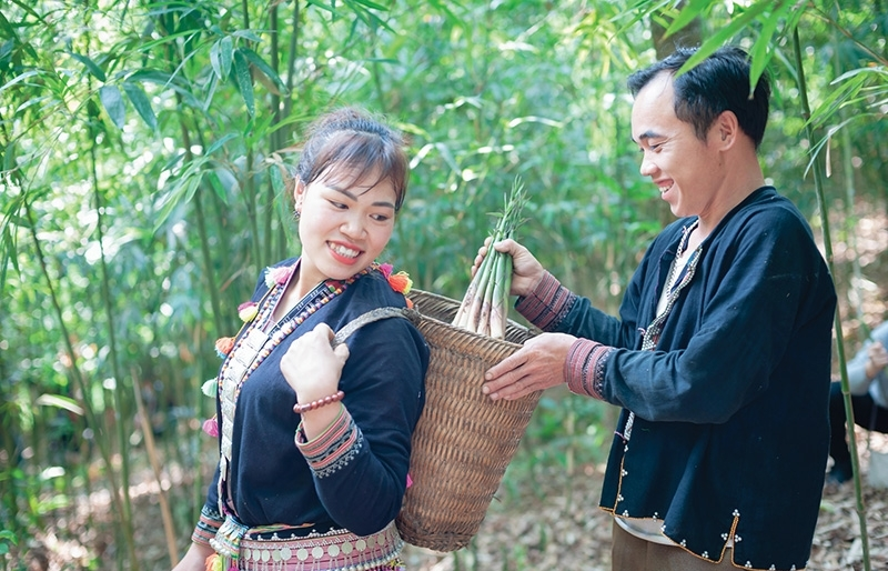 Efforts ramped up to improve gender equality and women's roles in Vietnam
