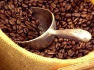 Nestle announced $270 million new coffee factory in Vietnam
