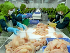 Bianfishco pledges to pay farmers' debts in August