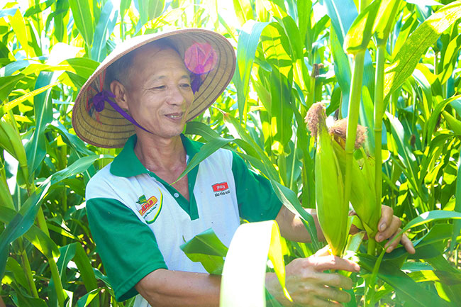 Corporate-governmental cooperation to better farmer's lives