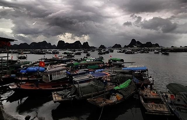 Third typhoon to hit Hai Phong, Quang Ninh on Friday
