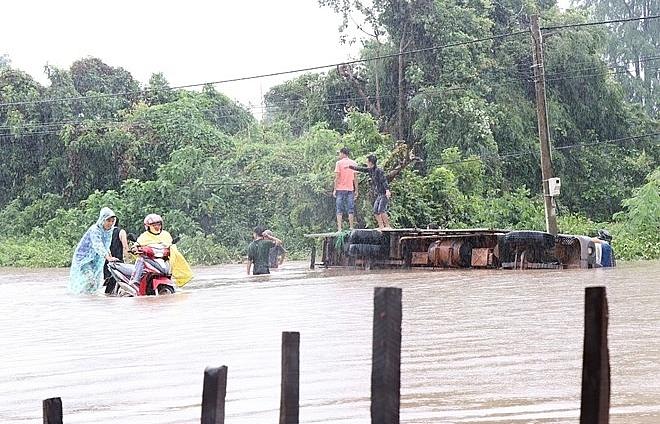 Heavy rain, flooding cause losses in Dak Lak province