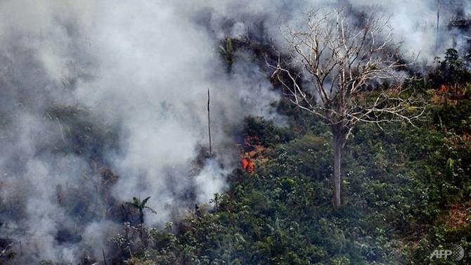 uk pledges 10 million for fire ravaged amazon