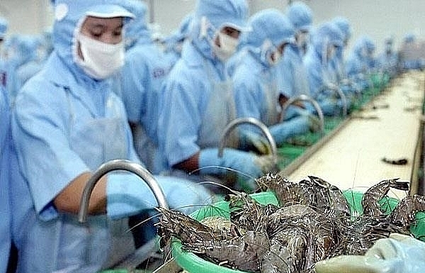 Vietnamese shrimp exporters enjoy zero taxes to US