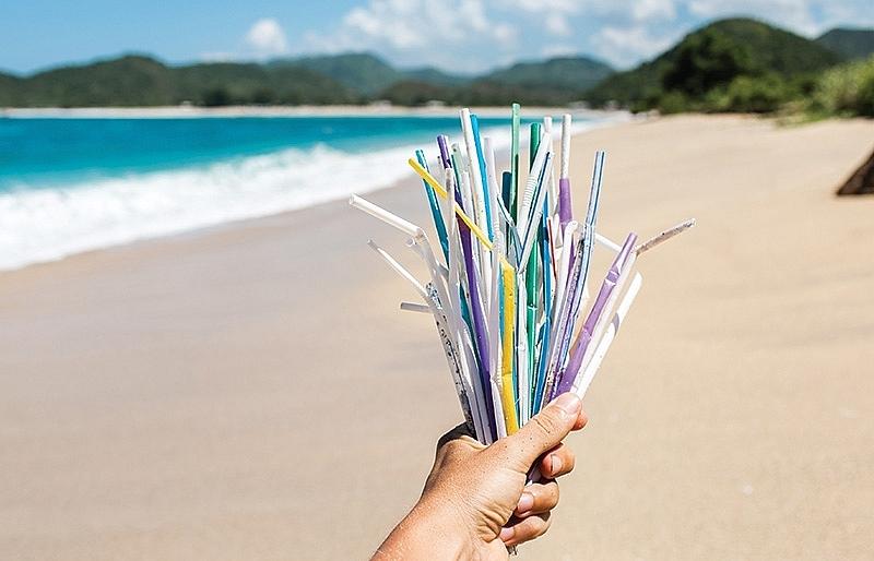 Adding plastics to the circular economy