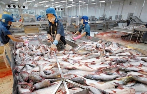 Aquatic firm set to be removed from the stock market