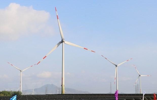 Trung Nam wind power farm in Ninh Thuan province (Photo: VNA)