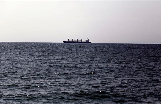 RoK launches search for missing Vietnamese sailor