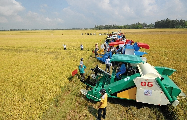 FDI attraction needs to centre on  agriculture and rural restructuring