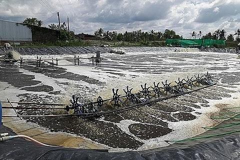 hi tech in aquaculture needed experts