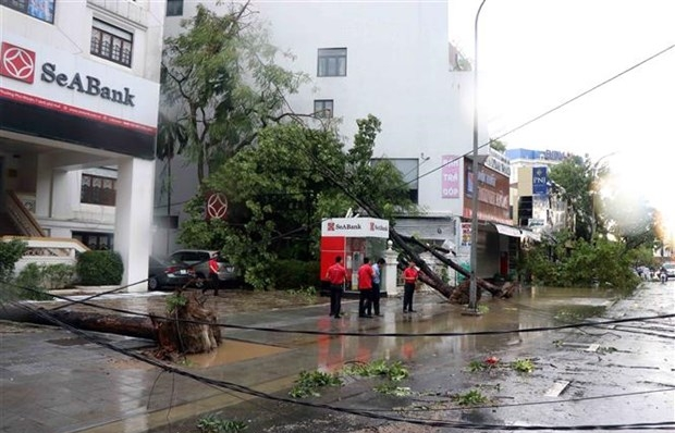 Storm Noul leaves one dead, several injured in Thua Thien-Hue