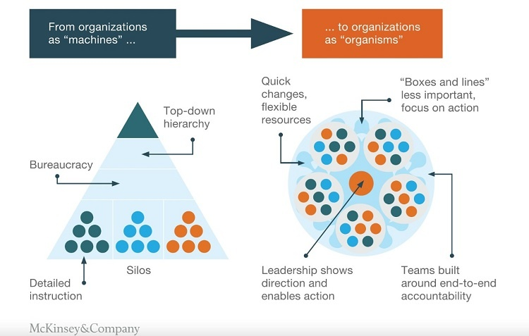 Comparision between triangle and circle management model. Source: McKinsey&Company