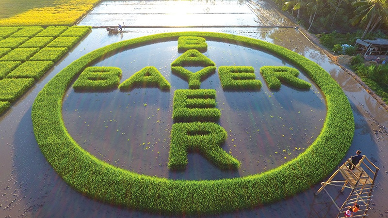 1563 Bayer promoting sustainable Vietnam healthcare and agriculture