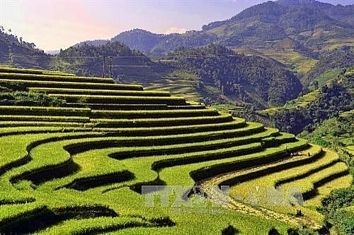 muong lo tourism culture week to resume on october 12 14