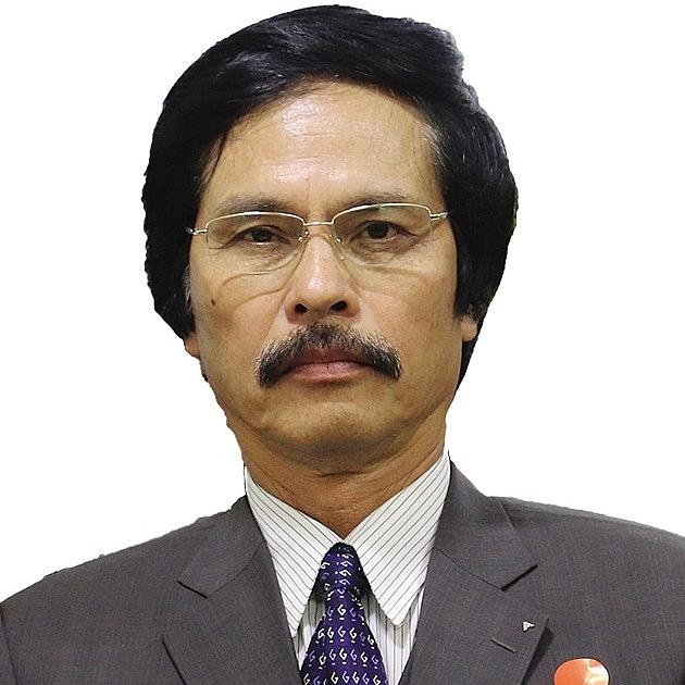 fdi in vietnam according to pundits