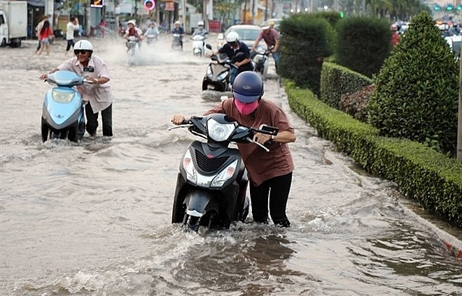 Mekong Delta fights flooding from high tides