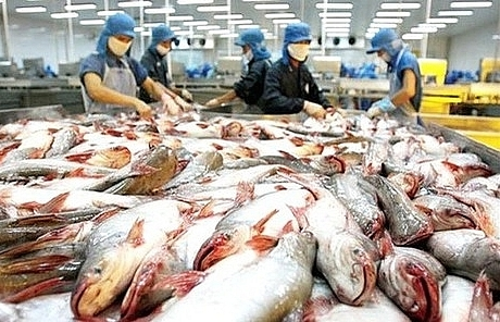 Demand for Vietnam seafood on the rise