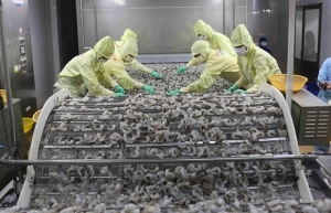 Nine-month agro-forestry-aquatic product exports hit 30.05 bln USD