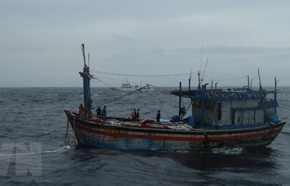 three binh dinh fishermen adrift at sea saved