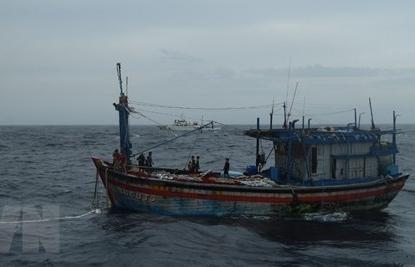 Three Binh Dinh fishermen adrift at sea saved