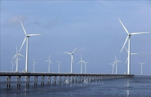 Vietnam sees fastest rise in solar, wind power rate in national electricity structure in 2020: Research