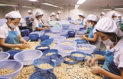 Vietnam calls for more EU investment in agriculture