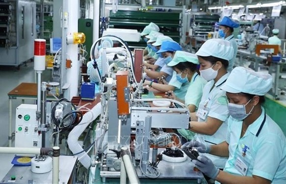 Young overseas Vietnamese prove crucial to homeland's innovation