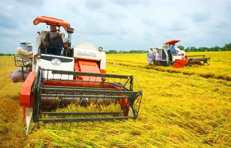 Agricultural troubles hampering business recovery