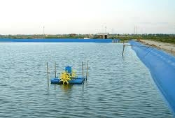 New plans set for aquaculture