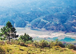 Lam Dong's indolent tourism projects
