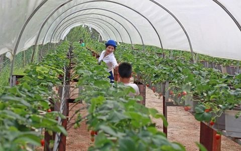 More training needed in high-tech agriculture