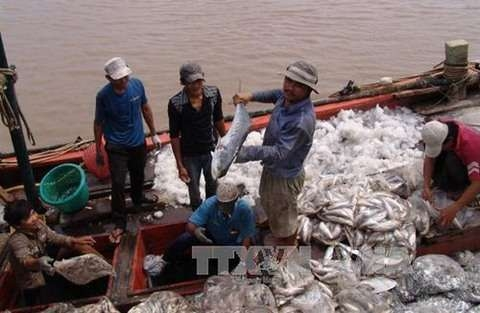 use of fish byproducts could lead to higher profits experts
