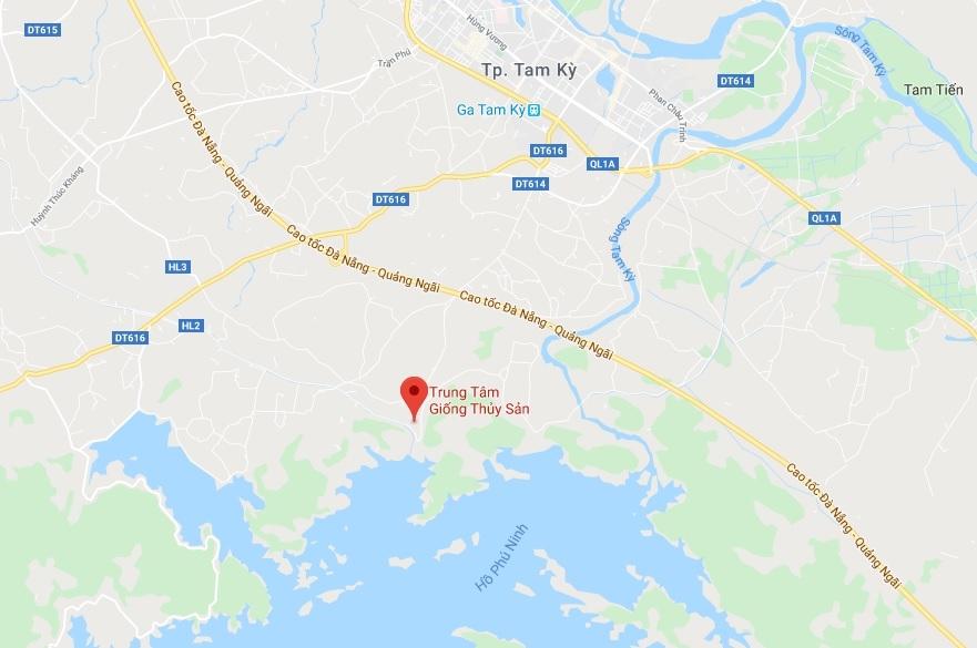 Quang Nam Aquaculture Larvae Centre stock auction
