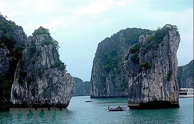 JICA's green growth project in Ha Long Bay bears fruit