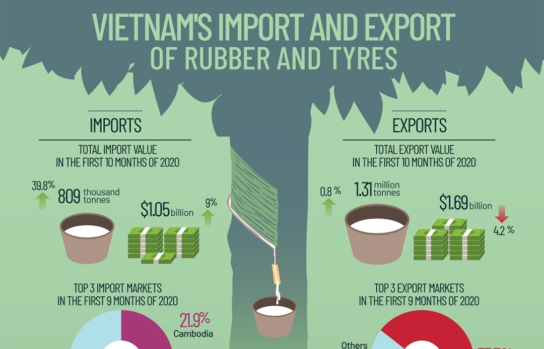Vietnam's import and export of rubber and tyres (Infographics)