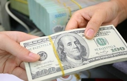 Vietnam invests over 458 million USD abroad in 11 months