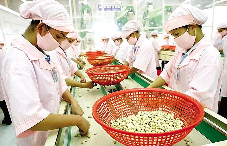 Agri-trade to blossom through EVFTA